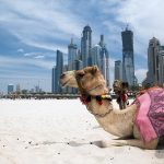 Holiday to Dubai
