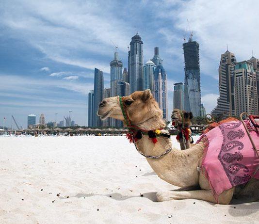 Holiday to Dubai